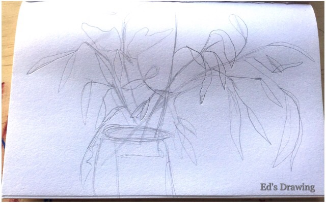 Ed's drawing 1