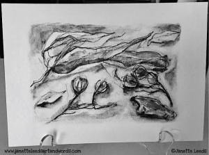 Gum leave drawing