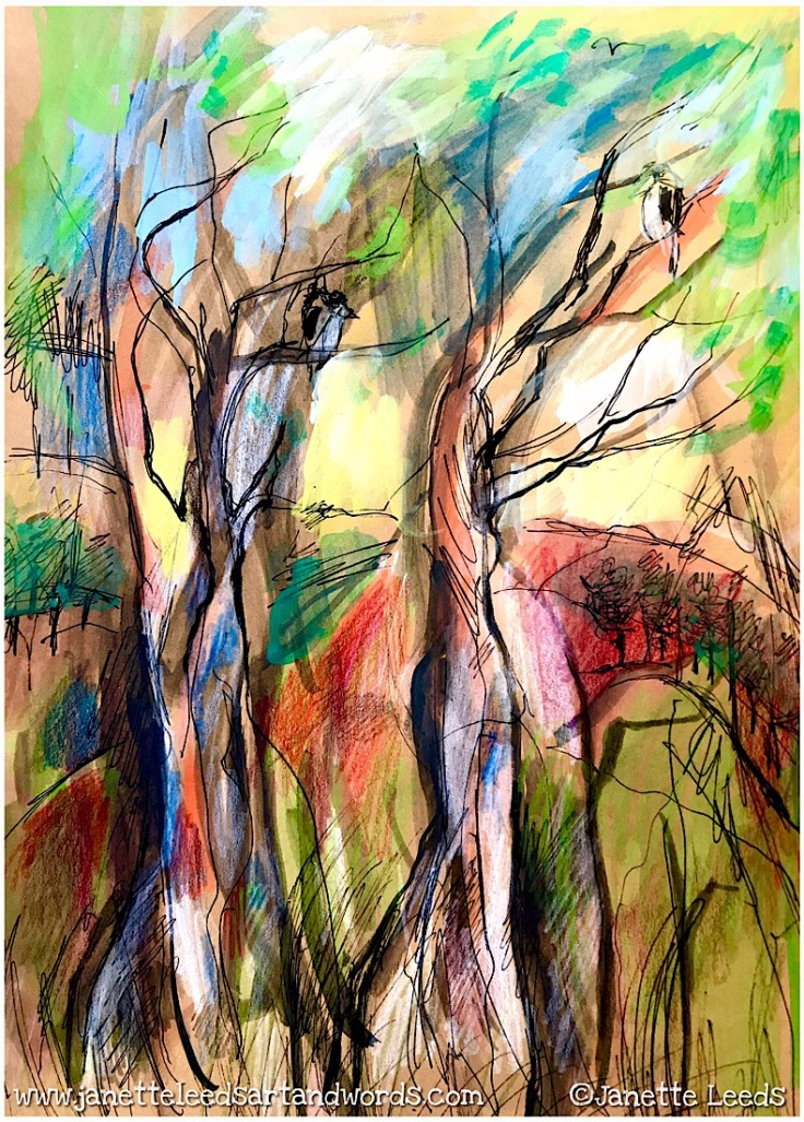 Drawing of trees