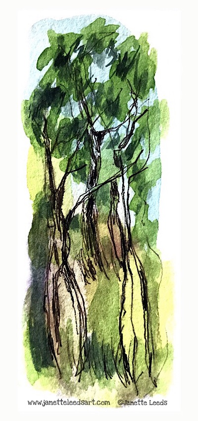 Ink pen and watercolour trees