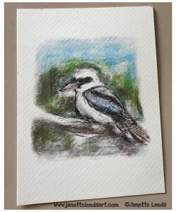 Print of a Kookaburra drawing.